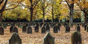 CemeteryFall-890x445-01