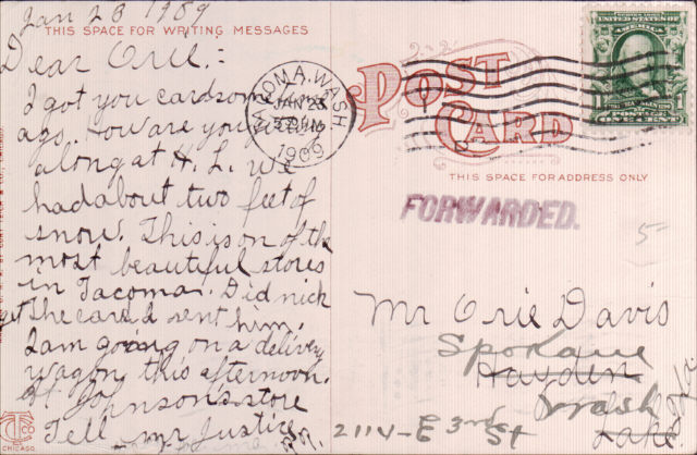 People's Store Postcard, 1909, back