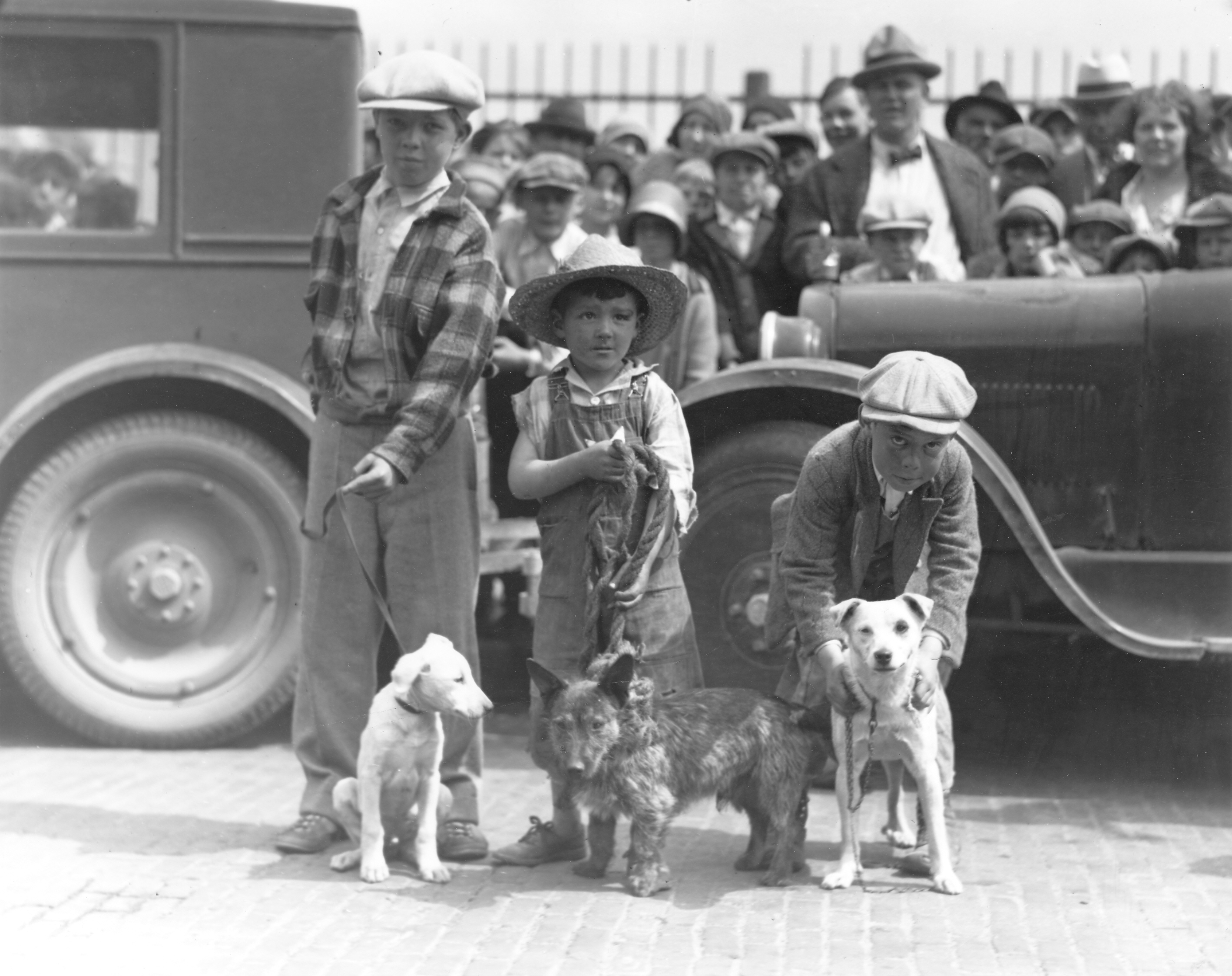 Real Old Fashioned Mutts in 1930