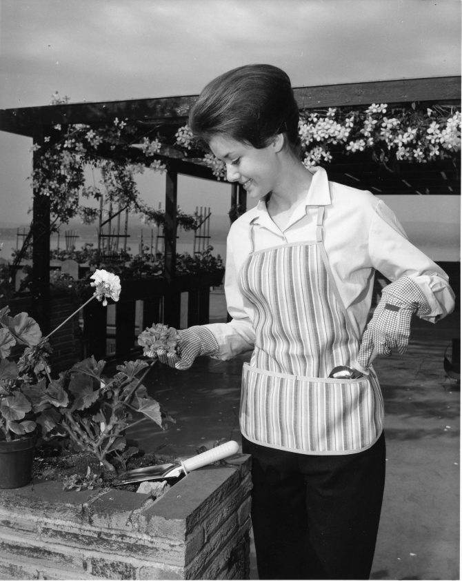Image of Miss Tacoma 1964