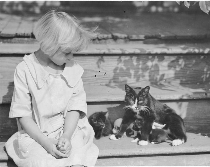 Image of a young girl with a kitten and puppies