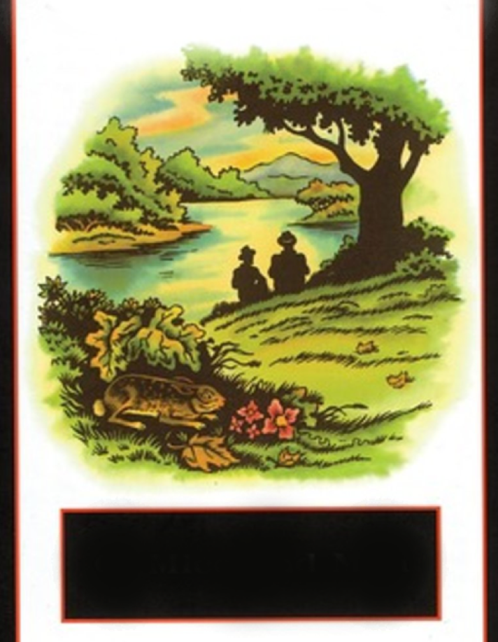 Cover Image 9