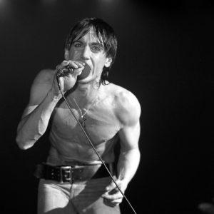 Musician Iggy Pop. Source: Don Hanover, Flickr