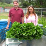 Library Assistant Chris Vance with Master Gardener Elizabeth Marshall posing with harvested butter lettuce.