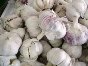 For the love of garlic | St  Louis Public Library