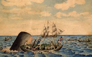 19th century whaling illustration