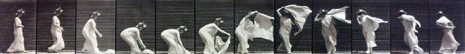 Animal Locomotion Dancing