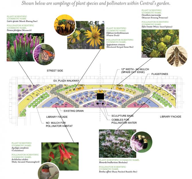 Your Liry Podcast: S1E4: Pollinator Garden | St. Louis ... Native Pollinator Garden Designs on native perennial garden, native wildflower garden, native plant garden, native bee habitat,