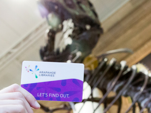 library card in museum