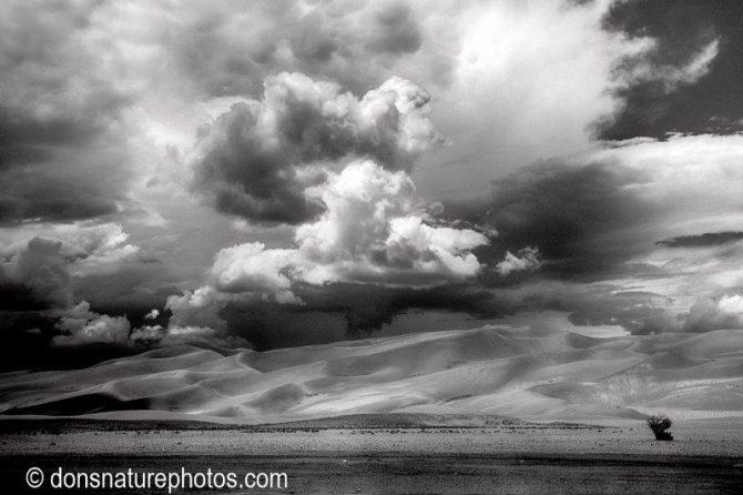 """Don Lewis, """"Great Sand Dunes NP"""", Various Medium"""