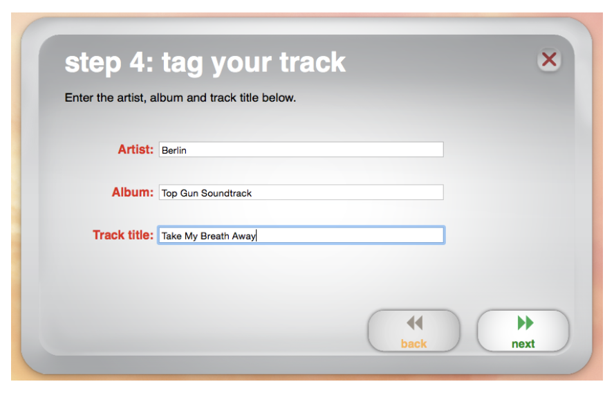 Image of artist, album and track information form.