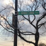 street sign with tree behind