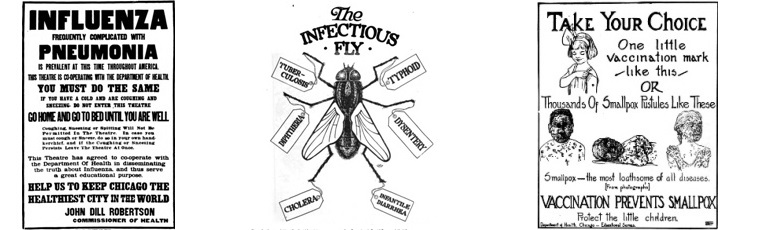 Posters on influenza, houseflies and smallpox