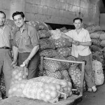 Inside view of the market with workers standing next to loads of onions and potatoes