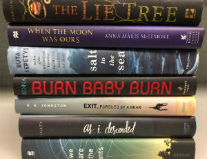 CPL's 2016 Teen Mock Book Awards | Chicago Public Library