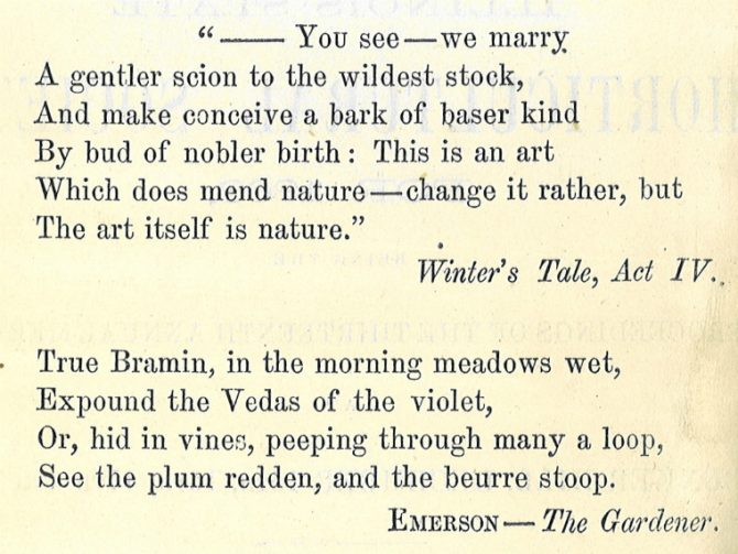 """""""--You see--we marry. A gentler scion to the wildest stock, And make conceive a bark of baser kind By bud of nobler birth: This is an art Which does mend nature--change it rather, but The art itself is nature."""" Winter's Tale, Act IV. True Bramin, in the morning meadows wet, Expound the Vedas of the violet, Or, hid in vines, peeping through many a loop, See the plum redden, and the beurre stoop. Emerson--The Gardener."""