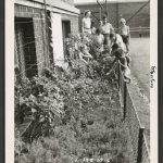 Young children tend plants in a narrow vegetable garden at the side of a building