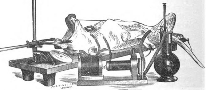 This drawing shows q dog in experimental apparatus. The dog is strapped down to a table, and there are a few mechanical instruments attached to the table. Their use is unclear, but they appear threatening.