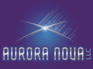 AuroraNova LLC March 2018 Brick Wall Gallery Artist