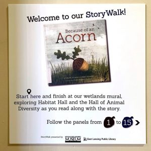 The starting point for the interactive StoryWalk at the MSU Museum celebrating the book Because of an Acorn by Lola Schaefer.