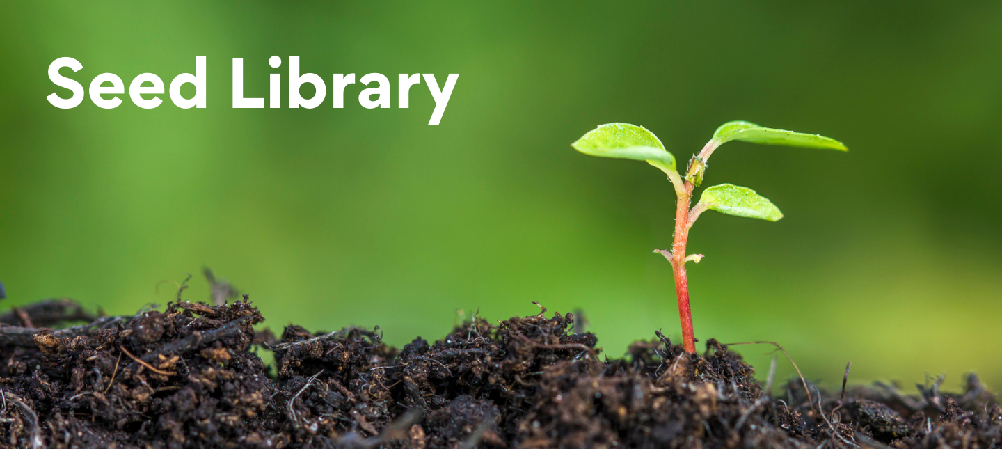 Image showing a small seedling with white text reading Seed Library