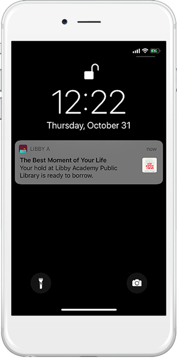 screen shot showing notification from Libby
