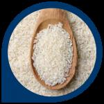 LCSUM Rice 480 x 480