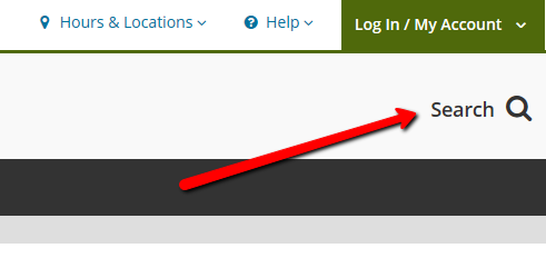 Web page screenshot highlighting where the search box is located