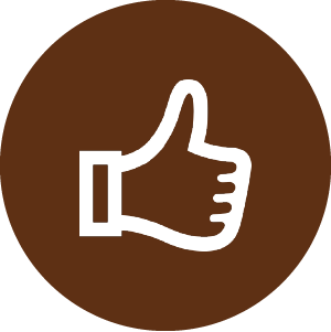 adult_icon_thumbs_up-300