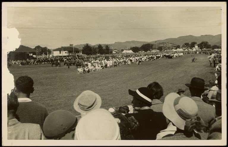 Animal parade, Canterbury A and P Show, Christchurch. Albert James North c.1950. CCL-Arch978-1-008