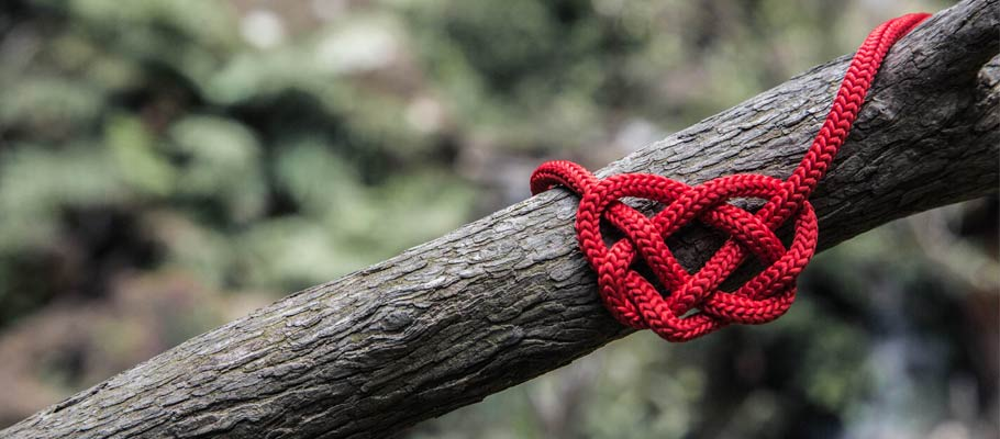 Red rope heart