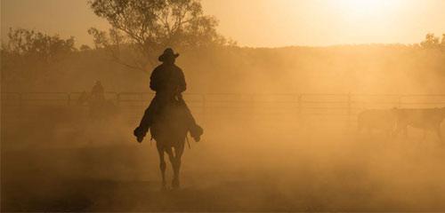 genre guide \u2013 western fiction christchurch city libraries West Texas