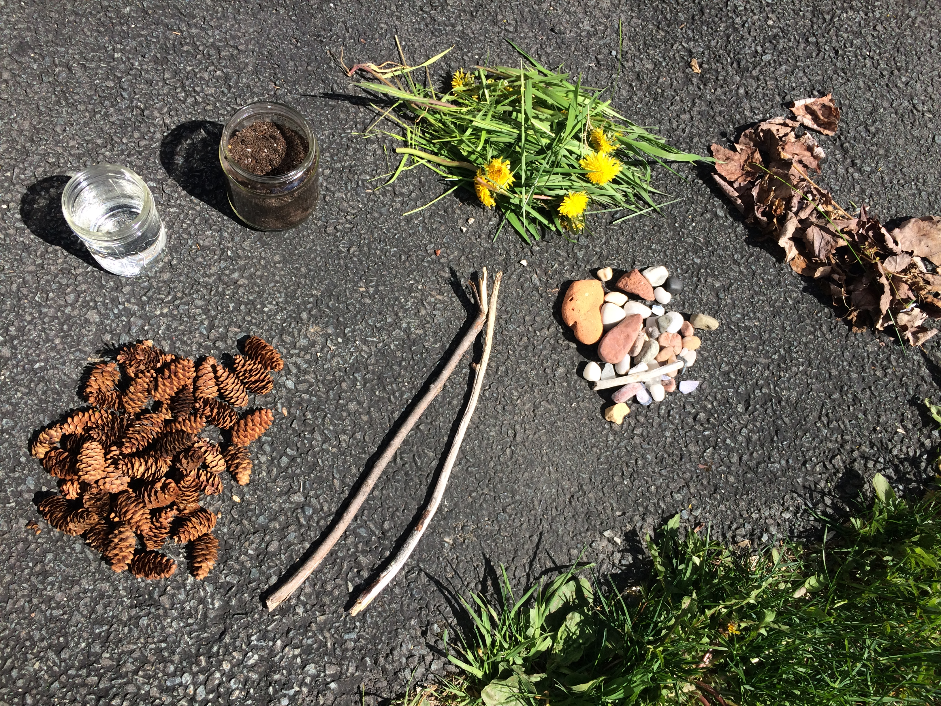 stones, leaves, sticks, pine cones, dirt, flowers