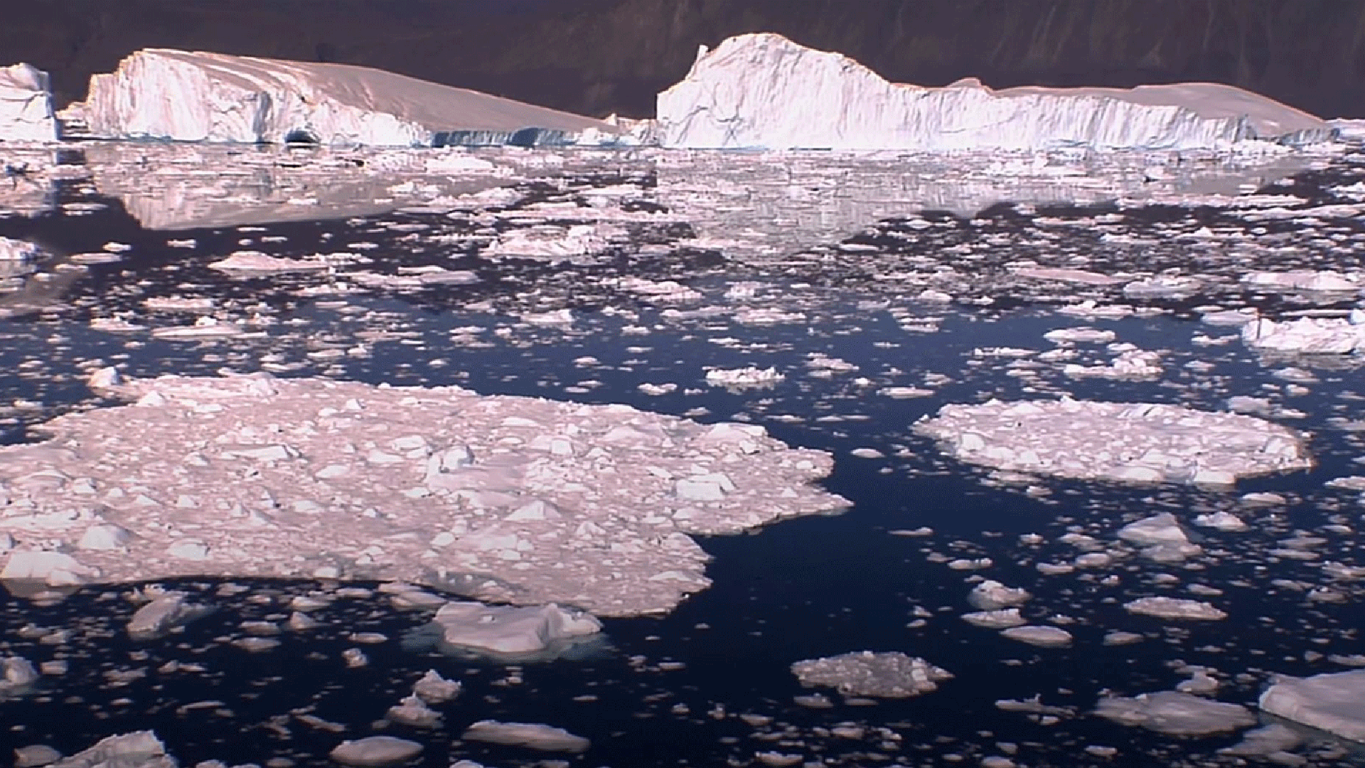Ice caps melting and breaking apart in dark blue water.