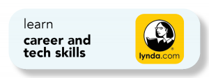 Learn career and teh skills with Lynda.com