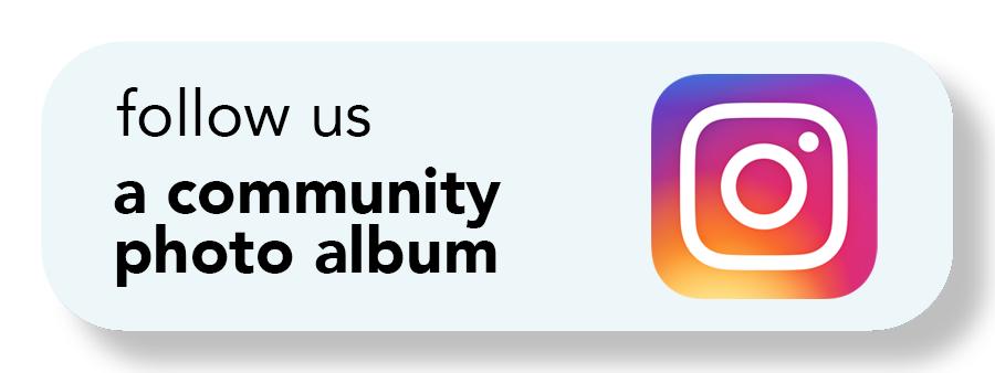 2020 follow us instagram online button