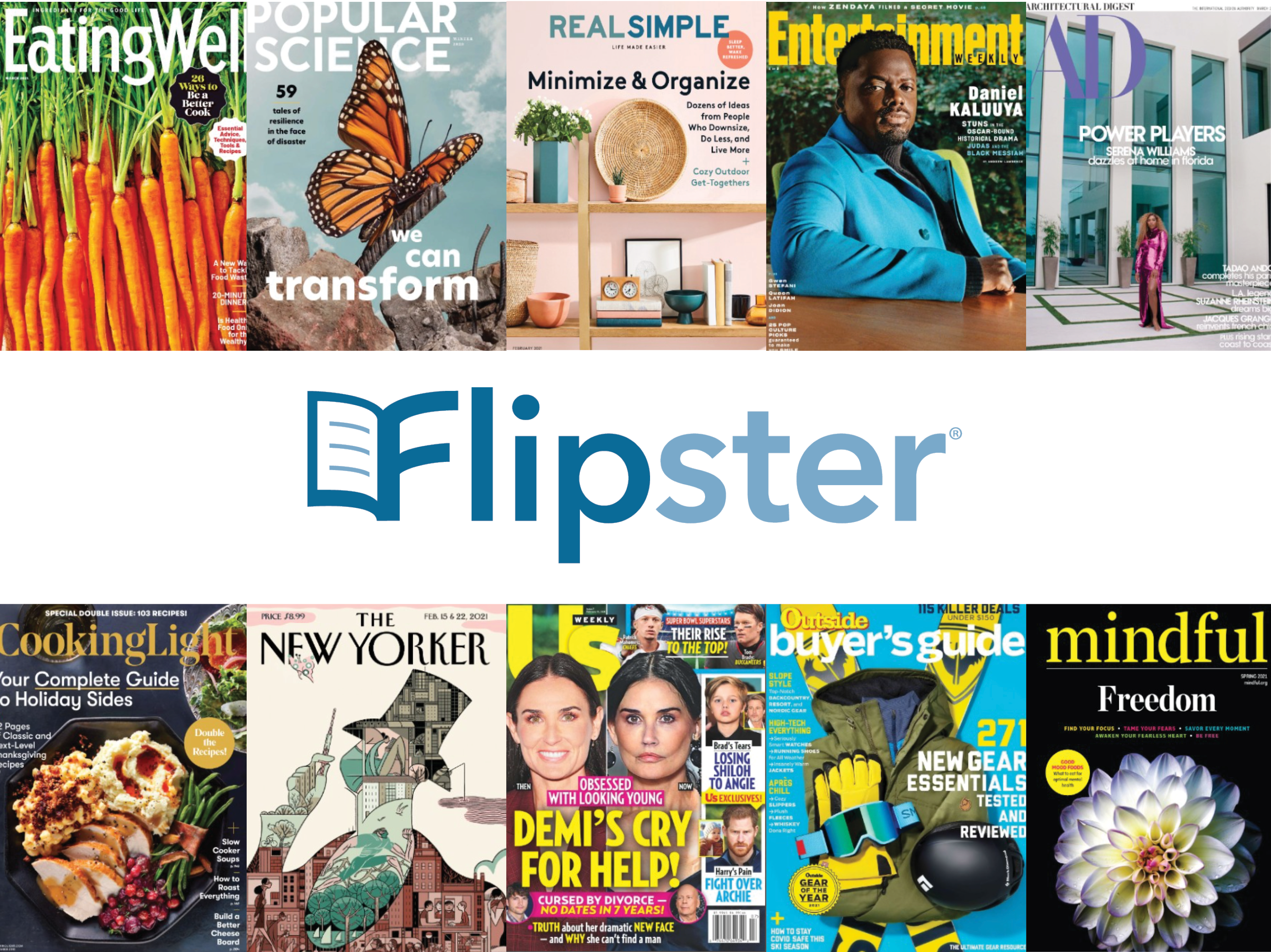 Web graphic for digital library flipster