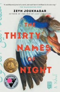 Image is of the book cover Thirty Names of Night by Zeyn Joukhadar