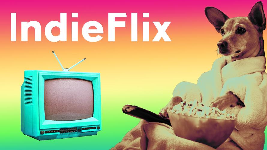 IndieFlix image of dog watching TV