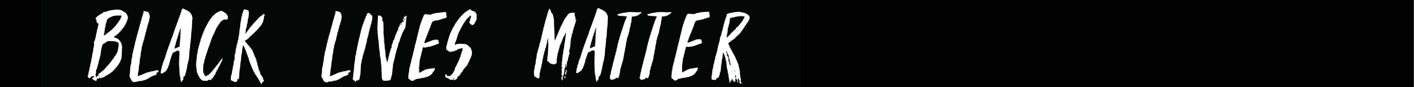 <p>Black Lives Matter narrow web banner</p>