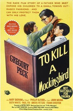 to kill a mockingbird type of book