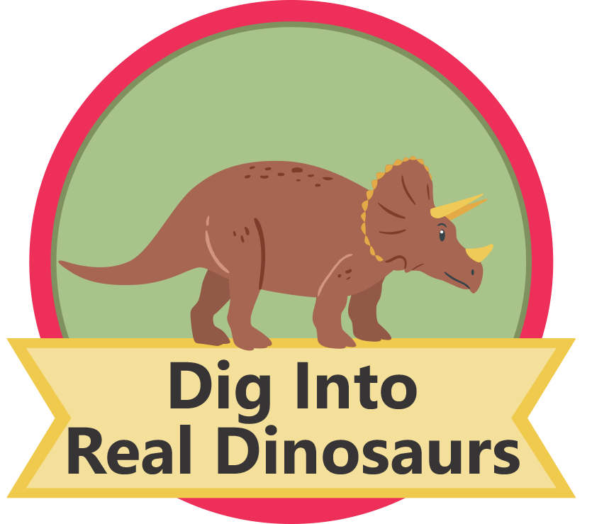 Dig Into Dinosaurs Mission (Chlildren)