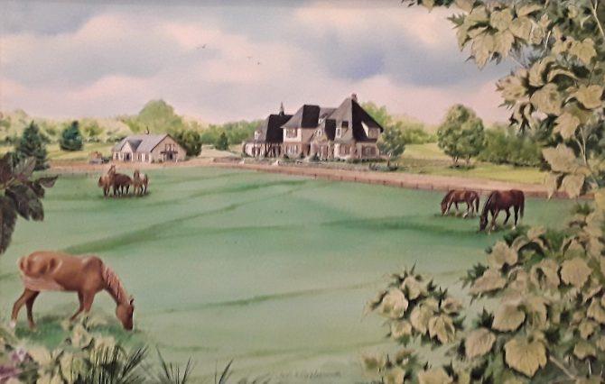 A Horse Farm on Legacy Lane