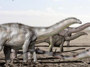 Life reconstruction of Brontosaurus excelsus