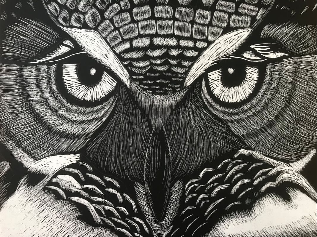 """Grades 9-10, """"Owl"""" by Hope Amberger"""