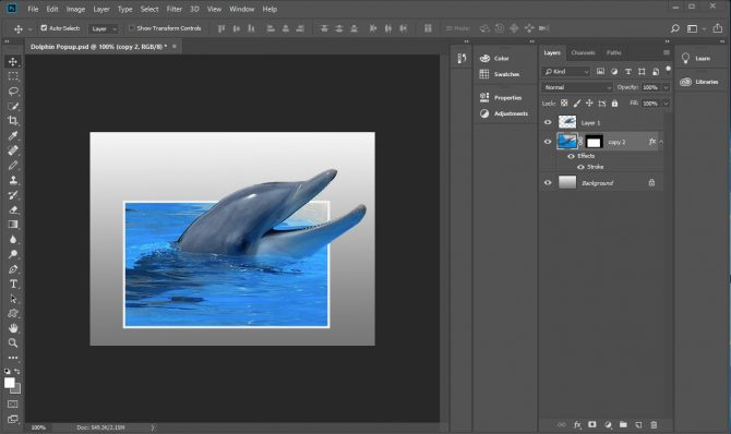 Adobe Photoshop with picture of a dolphin popping out of photo