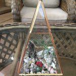 Terrarium in a Triangle Container