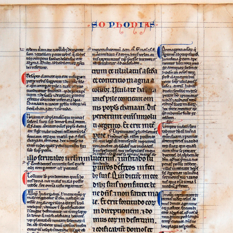 Illuminated page from the Library's Bible Collection