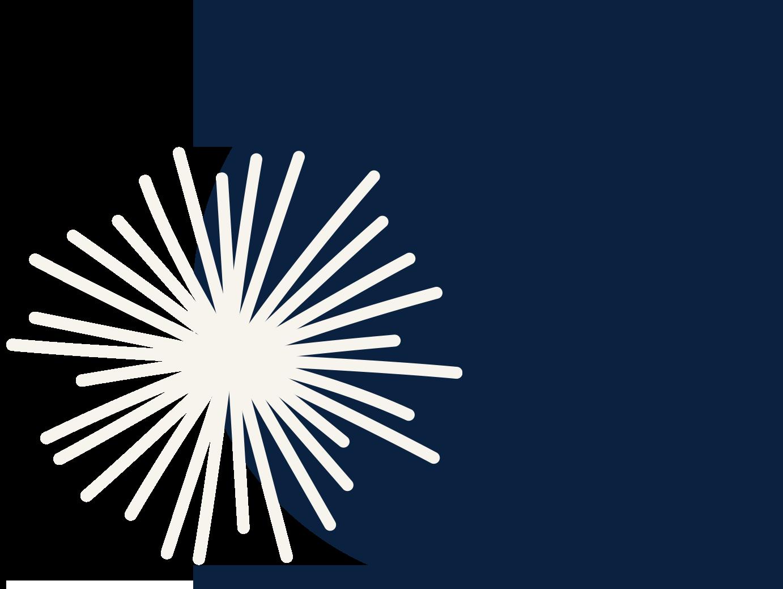 navy-circle-off-center-starburst-alt-version-1043-1039