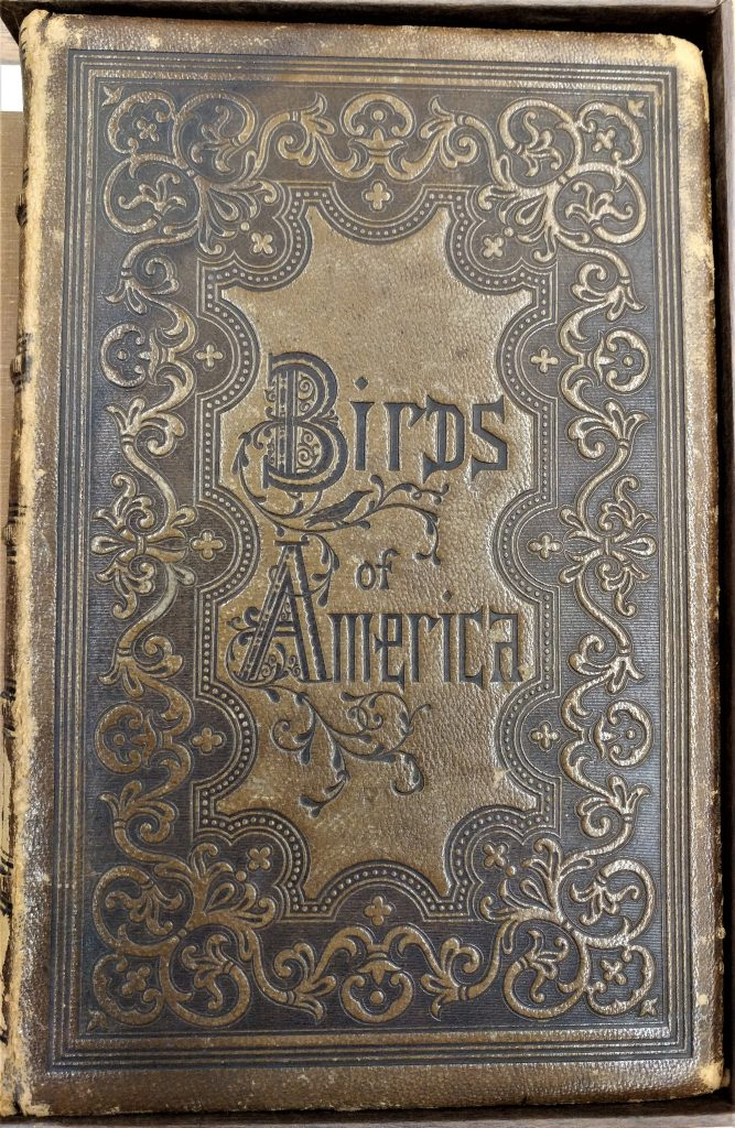 CENTRAL - RARE BOOKS Birds of America - cover